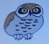 Batw-animal encyclopedia-owl