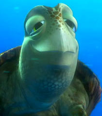Crush (Finding Nemo)