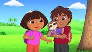 Dora.the.Explorer.S07E19.Dora.and.Diegos.Amazing.Animal.Circus.Adventure.720p.WEB-DL.x264.AAC.mp4 000403861