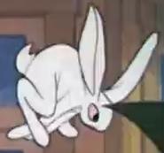 G-1941-04-18-rabbit01