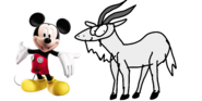 Mickey meets domestic goat
