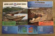 Predator Splashdown (26)