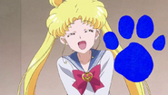 Sailor Moon Loves to Play Blue's Clues