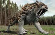Smilodon Fatalis (V5).jpg