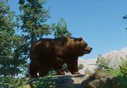 Himalayan-brown-bear-planet-zoo