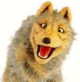 Johnnythewolf