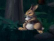 Jumpstart Snowshoe Hare