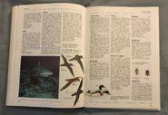 The Kingfisher Illustrated Encyclopedia of Animals (143)