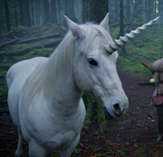 Unicorn (Once Upon a Time) (1).png