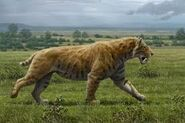 Carsized Armadillos Sabertoothed Tigers Huge Hairy Mastodons