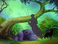 Jungle-cubs-volume02-baloo-and-bagheera02