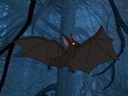 Rileys Adventures Little Brown Bat