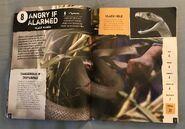 Scaly, Slippery Reptiles (3)
