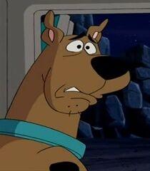 Scooby Doo in What's New, Scooby Doo.jpg