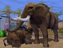 African-elephant-zoo-empire
