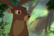 Bambi2preview.jpg-original.jpg