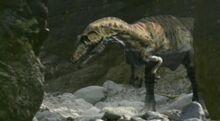 Giganotosaurus-0.jpg