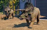 Triceratops horridus (Jurassic World Evolution 2)