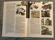 A Golden Exploring Earth Book of Animals (7)