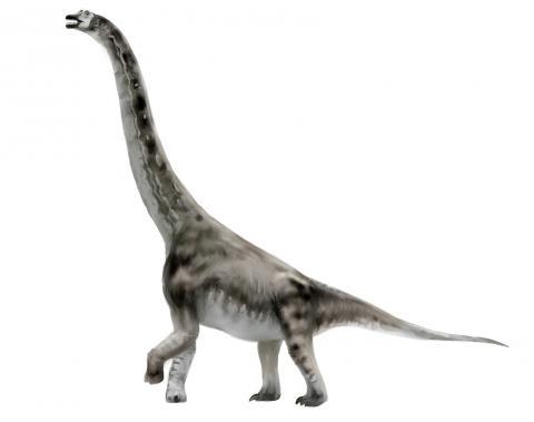 Abydosaurus