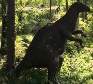 Iguanodon-boraszoo