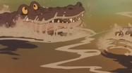JEL Crocodiles