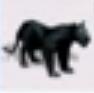 Panther-rct3