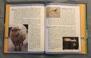 Scholastic Encyclopedia Of Animals (48)