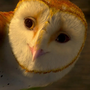 Soren (Legend of the Guardians - The Owls of Ga'Hoole)