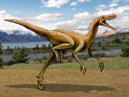 Dm dromaeosaurus