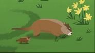 Groundhog (Wild Kratts)