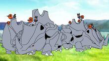 The Rhyhorn herd grazing.jpg