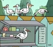 WBB Cranes