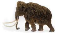 Woolly Elephant Model