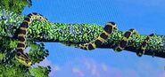 Yellow Anaconda ZTX