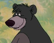 Baloo smile