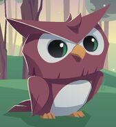 OWL01111