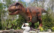 Saint Louis Zoo Tyrannosaurus Rex