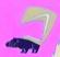 Stanley Hog-Nosed Skunk