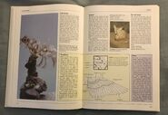 The Kingfisher Illustrated Encyclopedia of Animals (53)