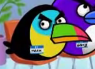 MAD Toucan