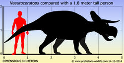 Nasutoceratops-size.jpg