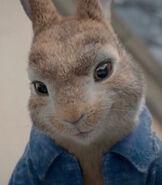 Peter-rabbit-peter-rabbit-4.9