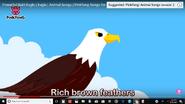 Pink Fong Eagle