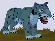 Snow Leopard WOZ