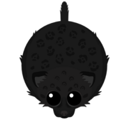 Mopeio Panther