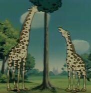 Ox-tales-s01e098-giraffe