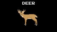 KPS Deer