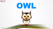 MagicBox Owl