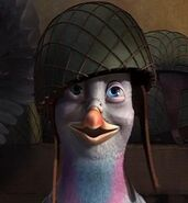 Valiant the Pigeon